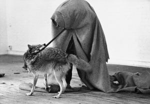 Beuys_Coyote_08_full
